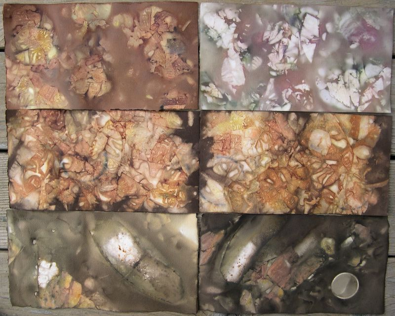 Onion skin dyed paper 1