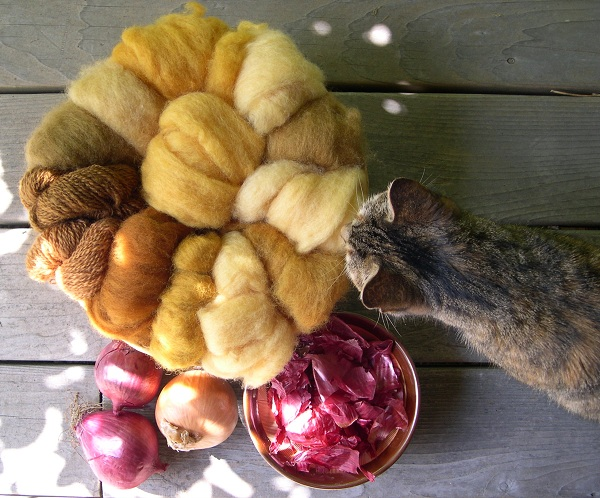 Wool dyed with onion skins