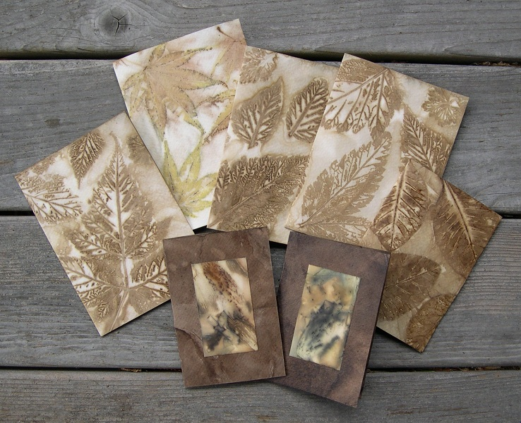 Eco-dyed cards